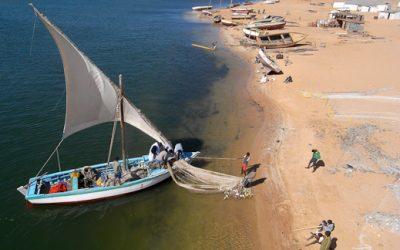 La pêche en voilier, une tradition d'avenir