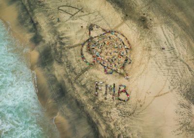 Tortue FMB - Maio, Cap Vert