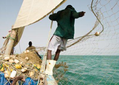 La pêche à la voile constitue un espoir pour l'avenir, un mod