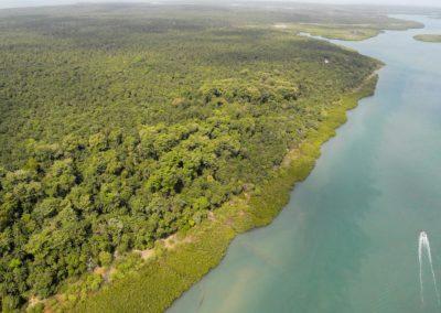 Forêts de Niominka - Ilha de Nago - UROK - Archipel des Bijagos - Guinée Bissau