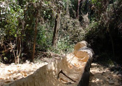 Pirogue monoxyle en construction dans forêt de Lautchande, Parc National de Canthanez- Guine Bissau