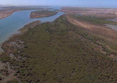 Parc National du Diawling, Mauritanie