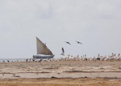 une expérience unique pour les visiteurs, la navigation au coeu