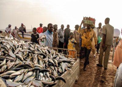 2Port artisanal Nouakchott - Mauritanie