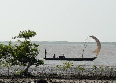 Pêche artisanale, Rio Cacheu, Parc National des Mangroves de Cacheu