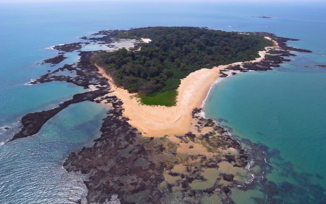 Le réseau des aires protégées de Guinée Bissau