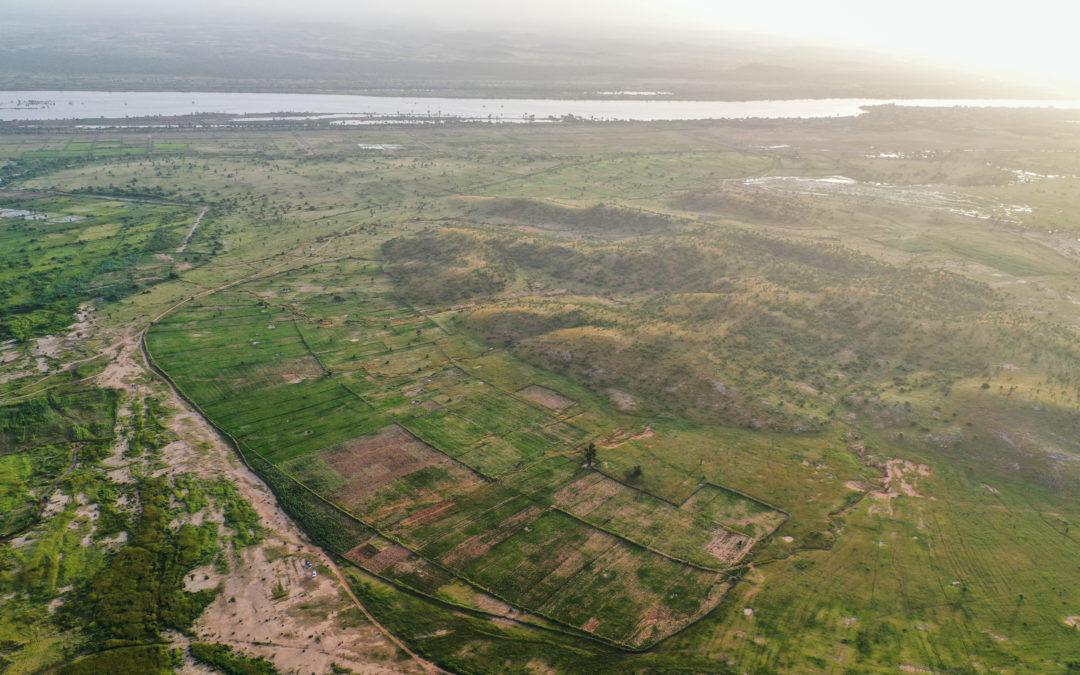 Le champs de Kidi Leme Sinia après restauration